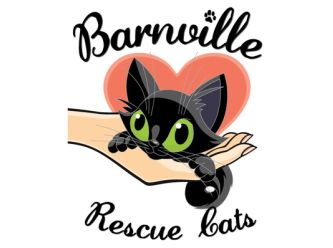 Large barnville rescue logo final web