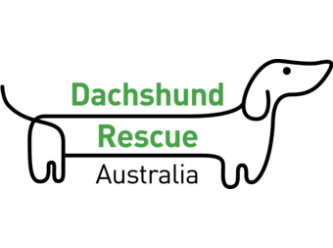 Dachshund Rescue Australia