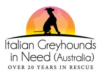 Italian Greyhounds in Need (Australia)