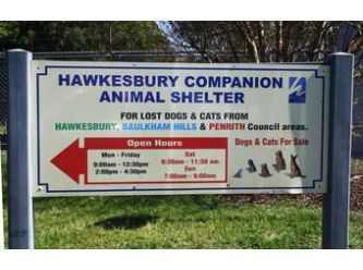 Friends of Hawkesbury Companion Animal Shelter