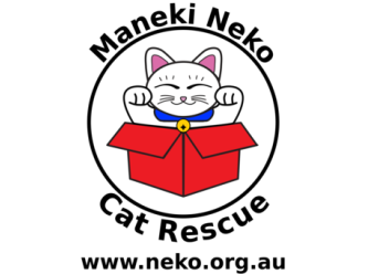 Maneki Neko Cat Rescue