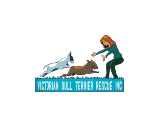 Victorian Bull Terrier Rescue