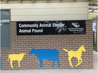 Mornington Peninsula Community Animal Shelter