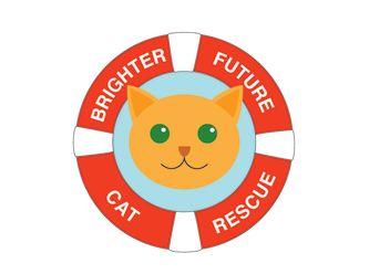 Brighter future cat rescue