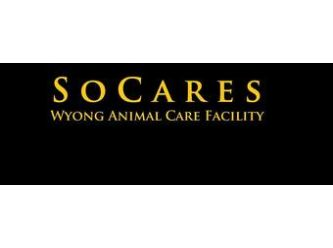 SoCares Wyong Animal Care Facility