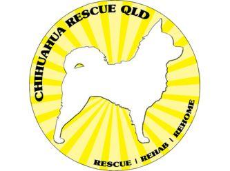 Chihuahua Rescue Queensland - PetRescue