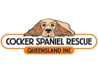Cocker Spaniel Rescue QLD inc.