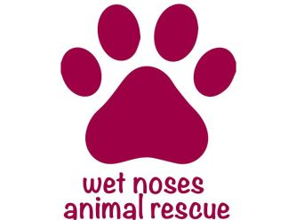 Wet Noses Animal Rescue