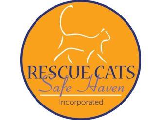 Rescue Cat Safe Haven