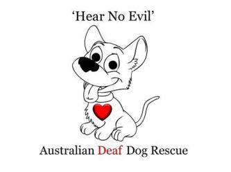 Hear No Evil - Australian Deaf Dog Rescue