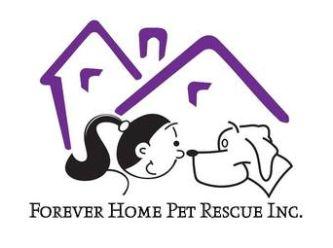 Large fhpri logo1