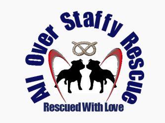 all over staffy rescue