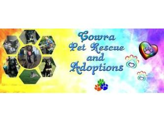 Cowra Pet Rescue & Rehoming