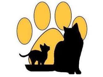 Just Cats Inc.