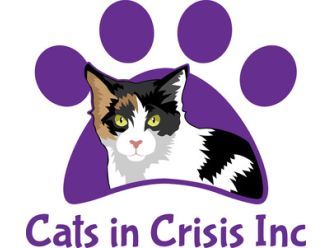 Cats in Crisis