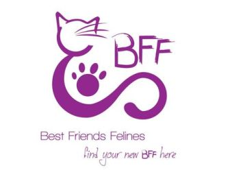 Large bff logo words
