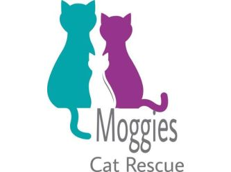 Moggies Cat Rescue Ltd