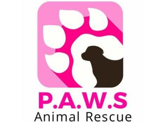 Pets Are Worth Saving Animal Rescue