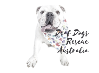 Deaf dogs Rescue Australia