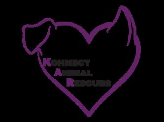 Large kar logo