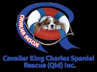 Cavalier King Charles Spaniel Rescue (Qld) Inc