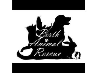 Perth Animal Rescue