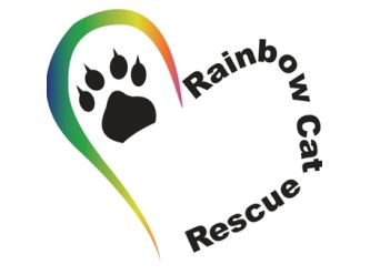 Rainbow cat rescue