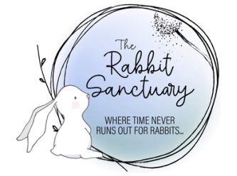 The Rabbit Sanctuary