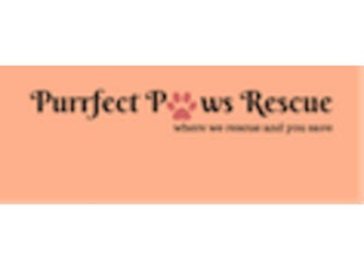 Purrfect Paws Rescue