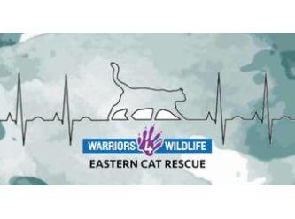 Warriors 4 Wildlife Inc.