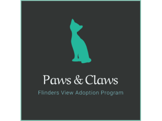 Paws and Claws Kitten Adoption Program