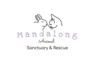 Mandalong Animal Sanctuary & Rescue