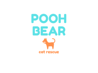 Pooh Bear Cat Rescue