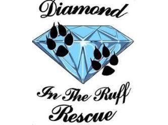 Diamond in the Ruff Rescue