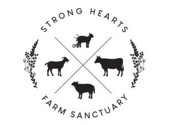 Strong Hearts Farm Sanctuary