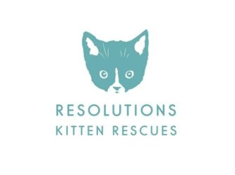 Resolutions Kitten Rescues