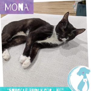 No photo for Mona