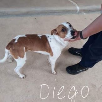 Diego with Sharon