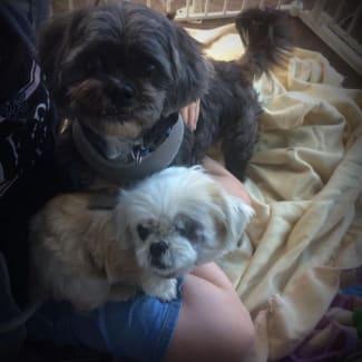 Billie & Leo