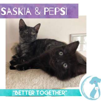 Saskia & Pepsi