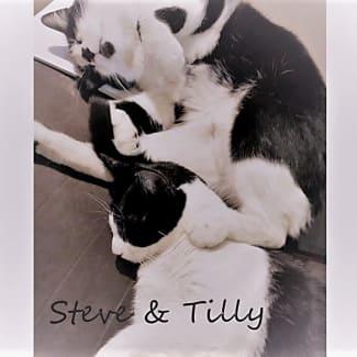 Steve & Tilly