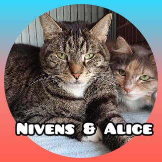 Nivens & Alice