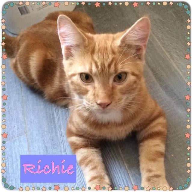 Photo of Richie