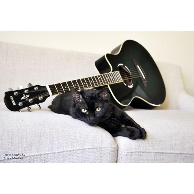 Photo of Hendrix~Groovy**Half Price**