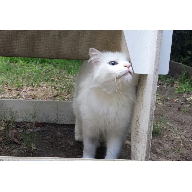 Photo of Dany