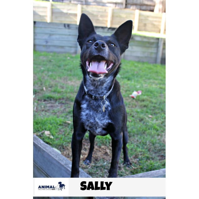 Photo of Sally *Check Out My Video*