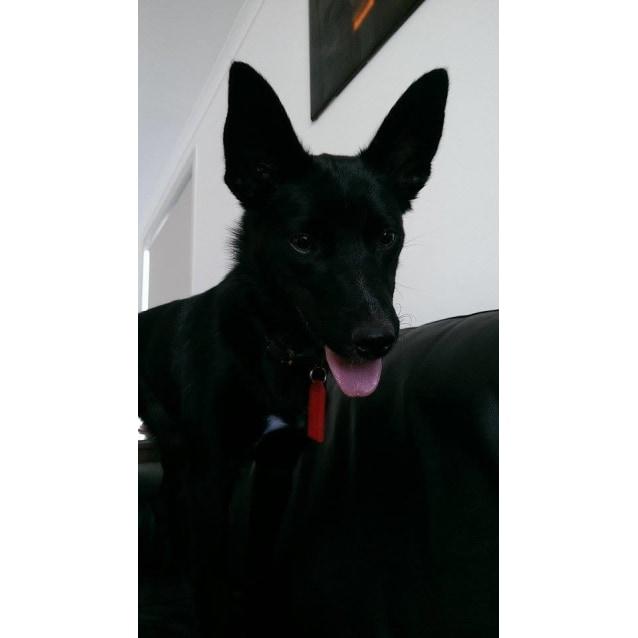 Photo of Betty