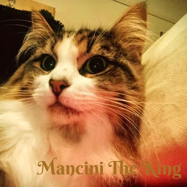 Photo of Mancini The King
