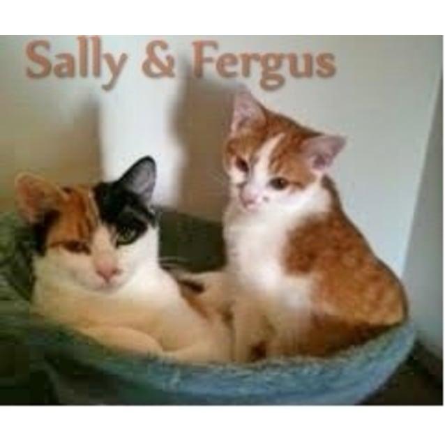 Photo of Fergus & His Mum Sally