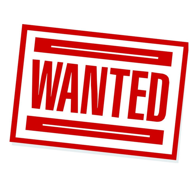 Photo of Wanted: Rabbit Savvy Foster Carers/Volunteers
